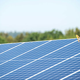 Solar_Header_Innovation-Tender_1920x1080.jpg